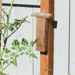 Block style mason bee house 2
