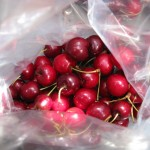 Haliburton Cherries July 2011