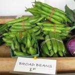 2011 Haliburton Farmstand Broad Beans