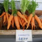 2011 Haliburton Farmstand Carrots