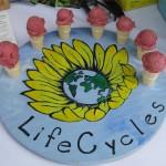 Lifecycles plum gelato