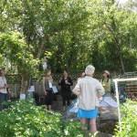 GTUF garden tour