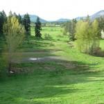View from Alderlea Farmhouse