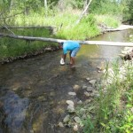 Henry returns salmon bones to the river
