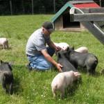 Jesse Perriera, Terra Nossa Farm, with piglets