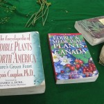 Books on wild foods