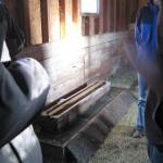 Sweet Earth Farms water trough duck barn