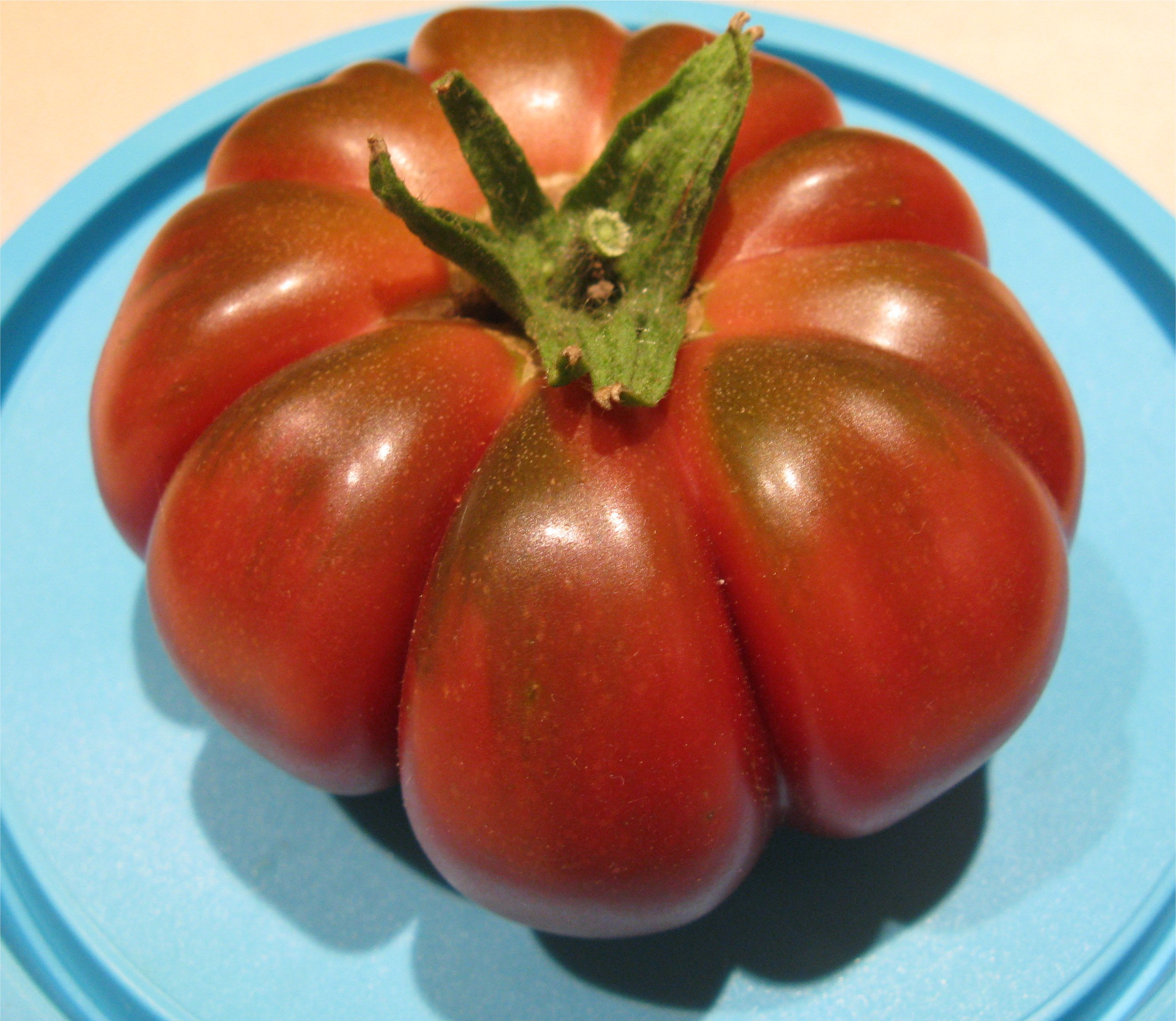 Black Tomatoes Of an h...