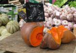 MarketPumpkin.jpg